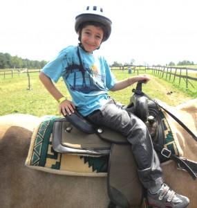 Horse2 sm